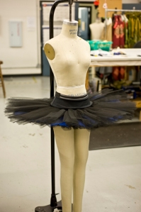 Woman's tutu. Photo by Leonel Nerio of Art Institute of Houston North.