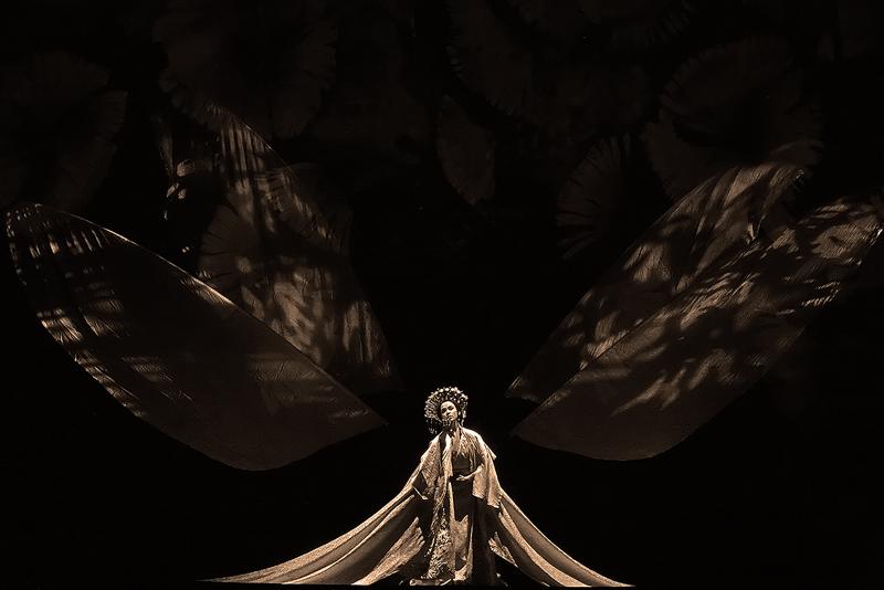 Madame Butterfly (Fote) (p. Sarkar)