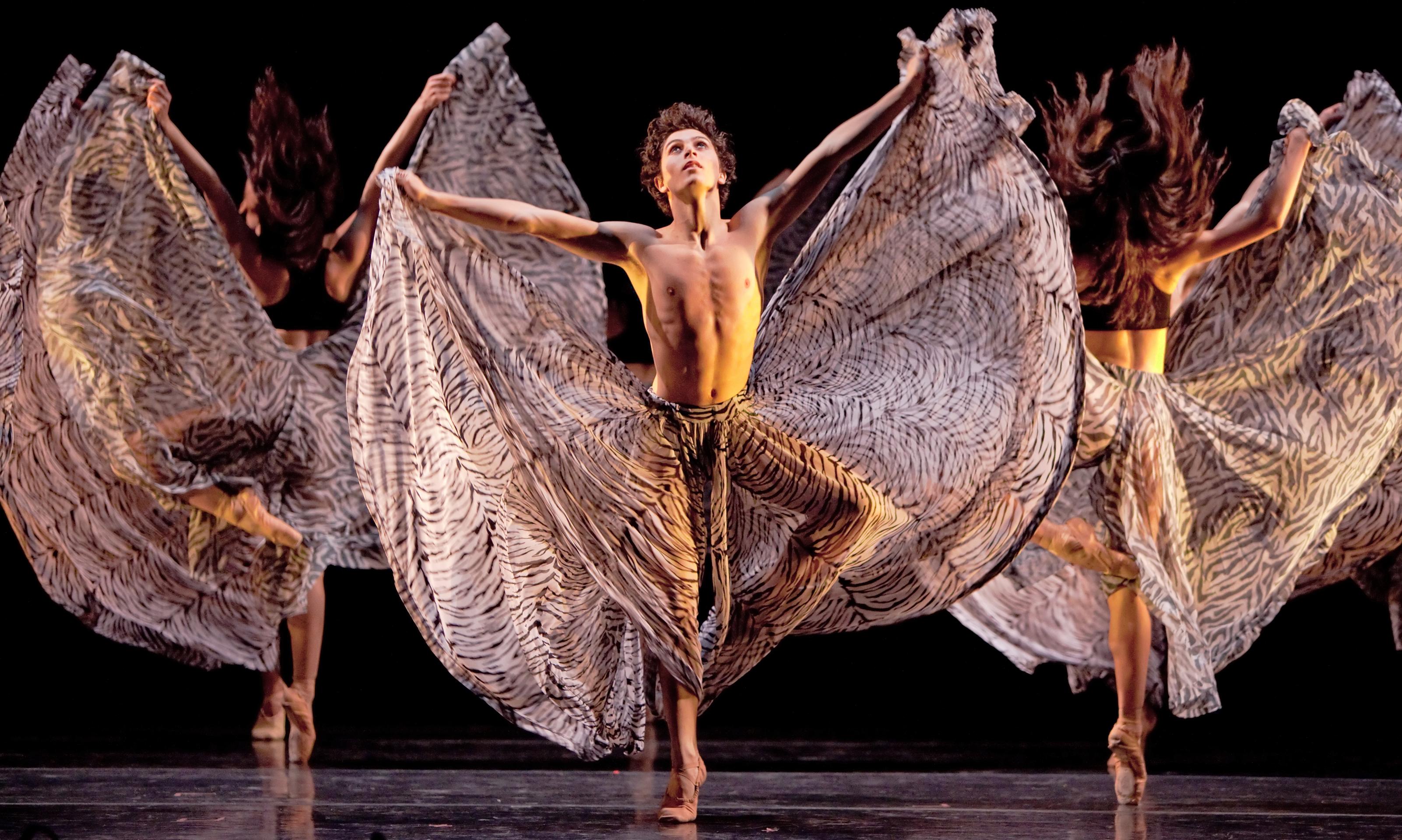 Seating Houston Ballet Houston Ballet Ii_amitava