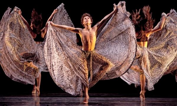 Fingerprints_Artists of Houston Ballet II_Amitava Sarkar9891_sm