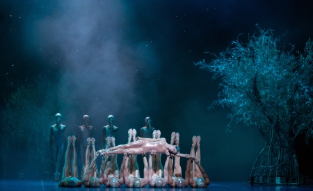 Houston Ballet 2014 Gonzalez and Artists of HB