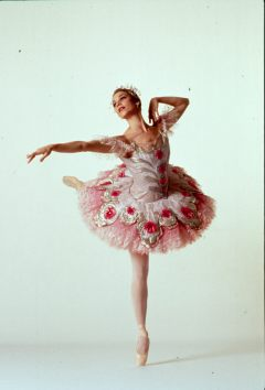 Sugar Plum Fairy Sally Rojas