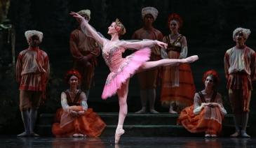 Sara Webb as Princess Aurora and Artists of Houston Ballet, Act I. Photography by Amitava Sarkar. Houston Ballet's The Sleeping Beauty. 2016.